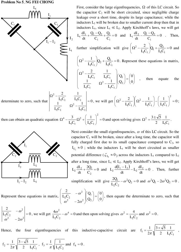 Solved differential equations problems